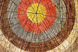 wood with painted target